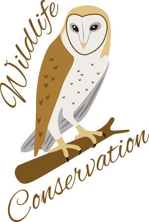 Dit zo'n koele kerkuil logo! Gebruik deze op het shirt of een totalisator van een kind zak! Stock Illustratie