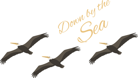 beach bag: This design of soaring pelicans is very nice.  Use this on a beach bag or zip up jacket. Illustration