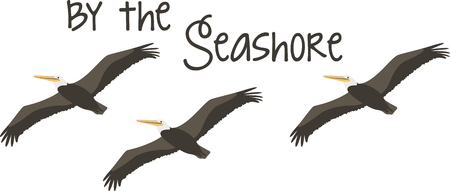 water fowl: This design of soaring pelicans is very nice.  Use this on a beach bag or zip up jacket. Illustration