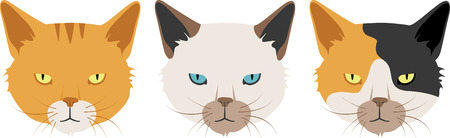 What a cute cat heads logo!  Use this on a girl's tee or pillowcase.
