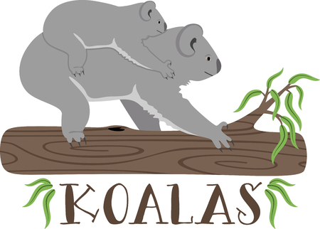 outback australia: Put the cute in kids� embroidery with the popular koala bear motif on bodysuits, layettes, t-shirts, hats, bibs & more!