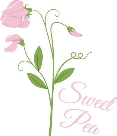 꽃은 봄 정원의 기적입니다! 이 예쁜 꽃 무늬를 린넨, 의상, 테이블 보, 냅킨 및 선물에 사용하십시오. 일러스트