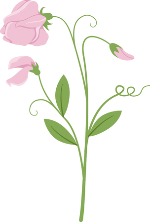 sweet pea: Blossoms are the miracle of a spring garden!  Use this pretty floral design on linen, clothing, tablecloths, napkins and gifts.