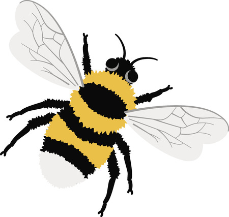 bumble bee: Buzz around in style with this bumble bee design. This will look great on t-shirts, banners, throw pillows, tote bags and more. Illustration