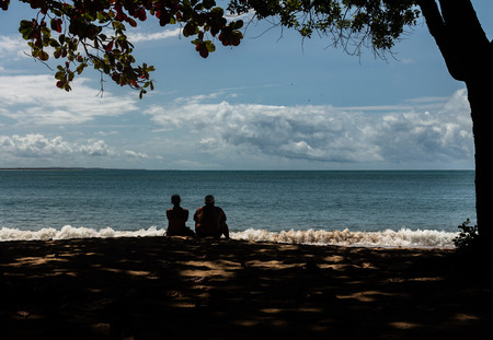 A couple of older adults contemplates the horizon on the beach. Man and woman sitting under a tree in the shade of the sun.
