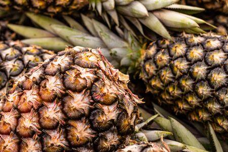 Sweet pineapples in the market. Fresh fruits in the market. Zdjęcie Seryjne