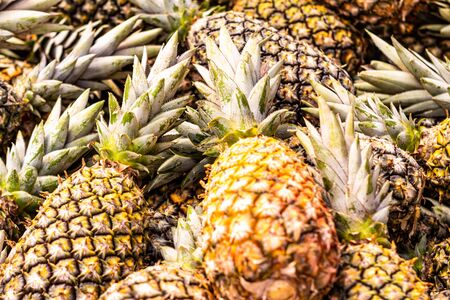 Sweet pineapples in the market. Fresh fruits in the market. Imagens