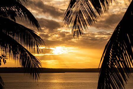 Hermoso atardecer entre palmeras. Nubes de colores dorados durante la caída del sol. Foto de archivo