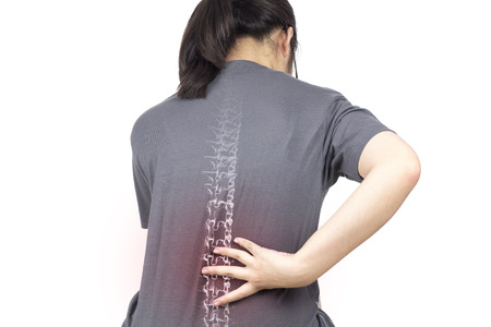 spine bones injury