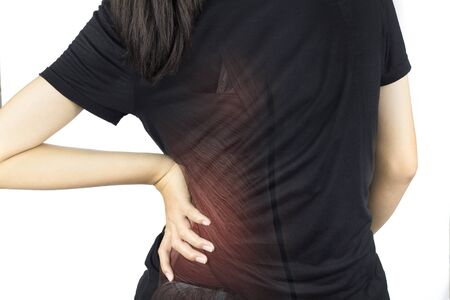spine muscle injury white background spine pain