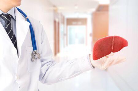 doctor cure 3D liver , concept fatty liver