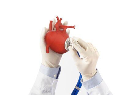 Doctor hold heart listens heart pulse, cardiology symptoms