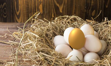 invest in gold egg , concept risk investment in trading asset