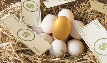 investir dans l'œuf d'or, investissement à risque de concept dans l'actif commercial