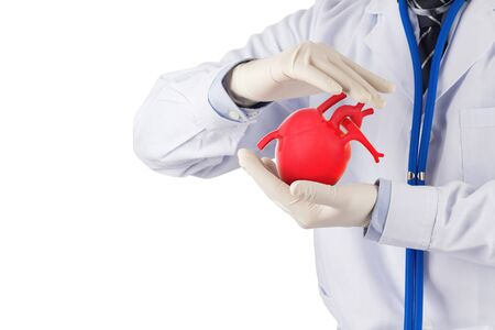doctor hold heart appear to prevent , cardiology symptoms in white background Stock fotó - 137467522