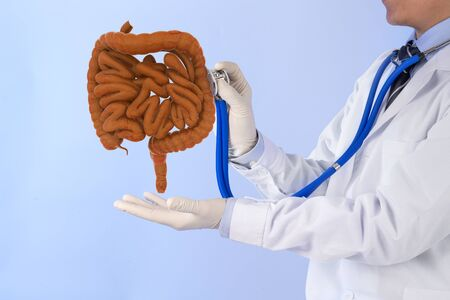 doctor touch intestine check human intestine , 3D concept Stock fotó - 137647105