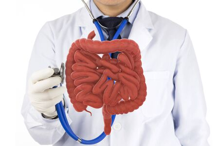 doctor touch intestine check human intestine , 3D concept