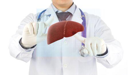 doctor check hologram 3D liver , concept fatty liver
