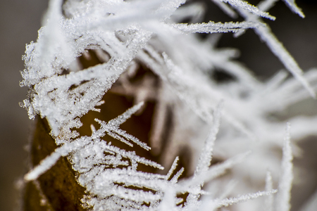 Strong frost in winter Stock Photo