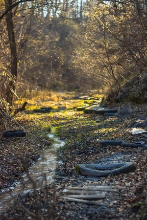 spring water: Spring creek in the village. Water pollution