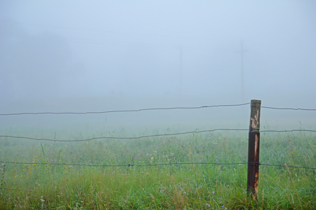 split rail: Fence and Fog at the spring morning