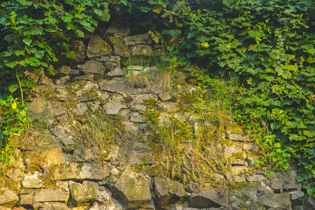 background texture of medieval castle stone wall