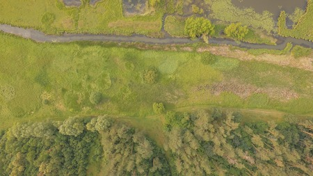 Aerial top view of summer green trees, river, and rural roads in forest background 写真素材
