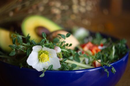 Salad with avocado and microgreens. Flower dogrose as decoration at background