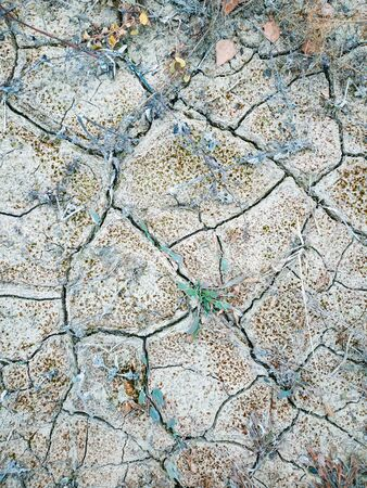 Surface of a grungy dry cracking parched earth for textural background. Stock Photo