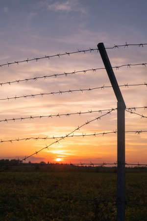 Silhouette of Barbed wire on sunset background.