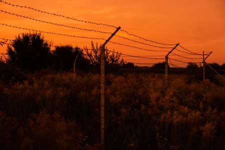 Silhouette of Barbed wire on red sunset background. Foto de archivo