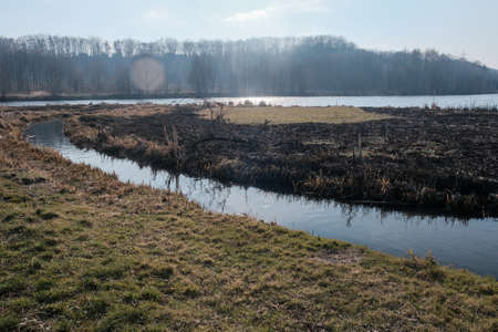 landscape with burning dry grass in a field by the river outside the city Foto de archivo