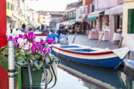 Flower pot in front of a boat, Venice