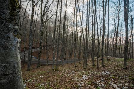 Forca d'Acero, Zugang zum Nationalpark der Abruzzen von Ciociaria, Lazio, Italien Standard-Bild - 76483976