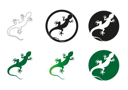 Gecko Vektor-Illustration auf einem weißen Hintergrund isoliert Standard-Bild - 76564777