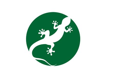 Gecko Vektor-Illustration auf einem weißen Hintergrund isoliert Standard-Bild - 76564782