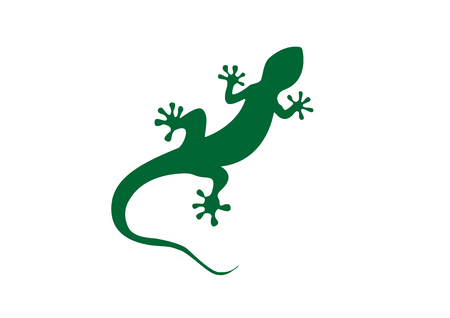 Gecko vector illustration isolated on a white background
