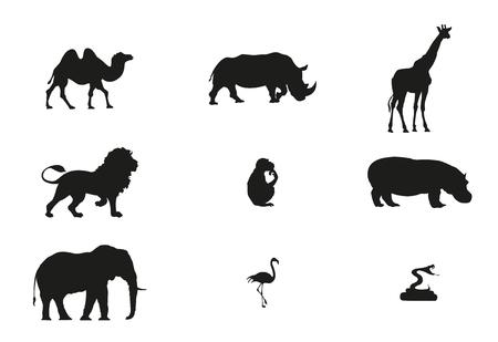 Zoo minimale Vektor-Illustration Standard-Bild - 76711446