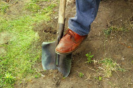 Work in a garden or treasure search photo