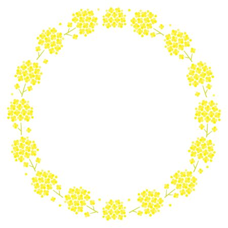 circular design of Canola flower