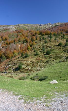taken in the french (Pre)Pyrenees, department Pyrenees atlantique, at the Somport pass Stock Photo - 610413
