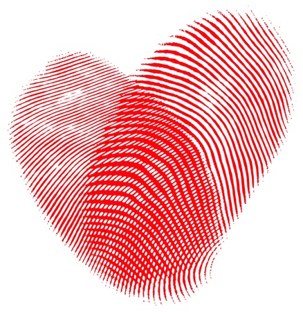 Two fingerprints forming a heart, romantic concept, isolated over white. Stock Photo - 9183004