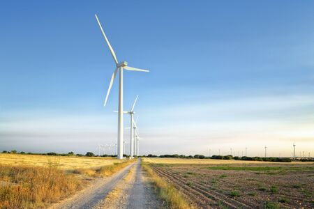 wind power towers. located in a field of yellow wheat and blue sky at sunset Zdjęcie Seryjne