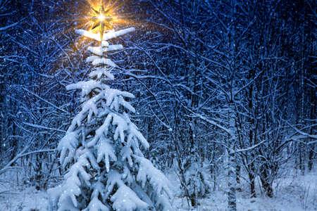 nascita di gesu: Natale paesaggio notturno con la stella di Natale. Archivio Fotografico
