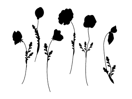 set of poppies silhoutte vector illustration