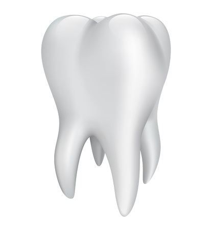 Tooth on a white background. Vector illustration