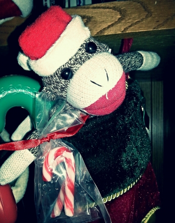 Sock monkey waiting for Christmas.