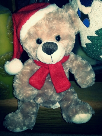 Stuffed bear waiting for Christmas.