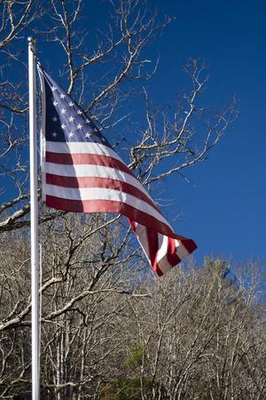 American flag flies in the breeze Imagens - 26893322