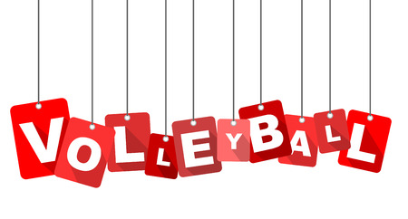 Red flat design volleyball.